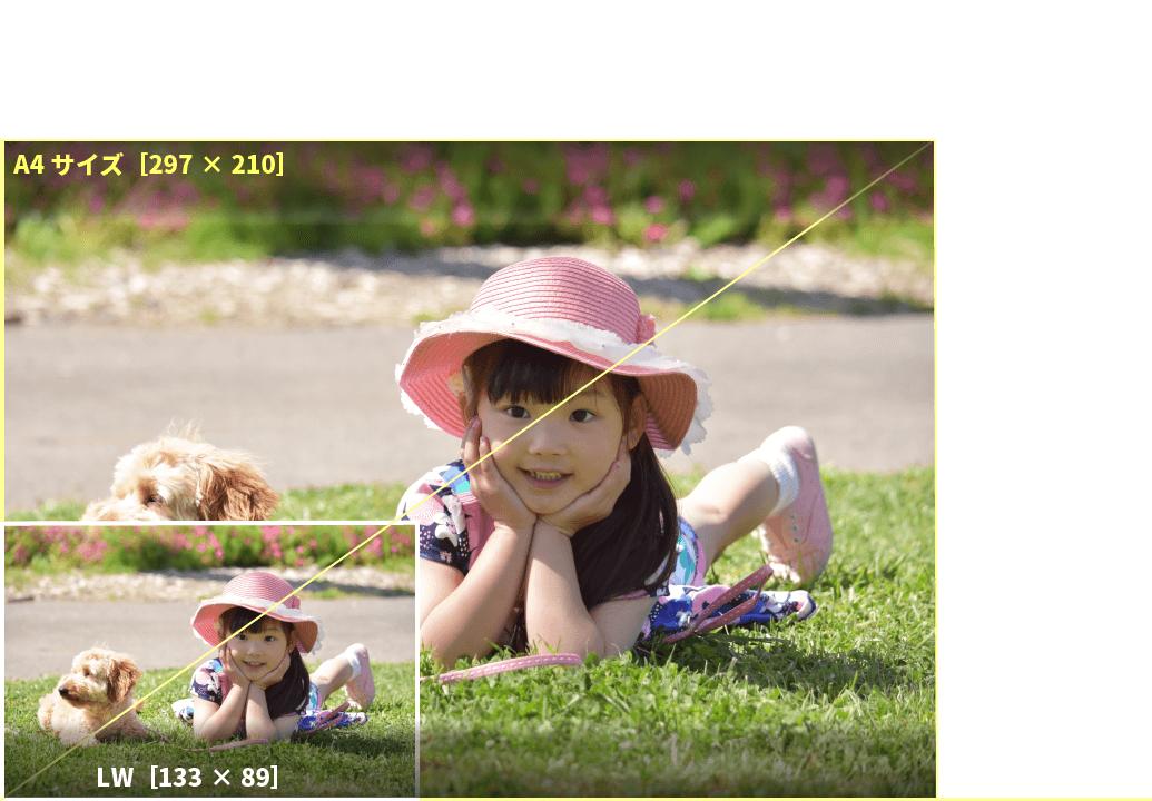 アプリプリントジャパンのLWサイズは、デジタル一眼レフカメラに多い画像の比率