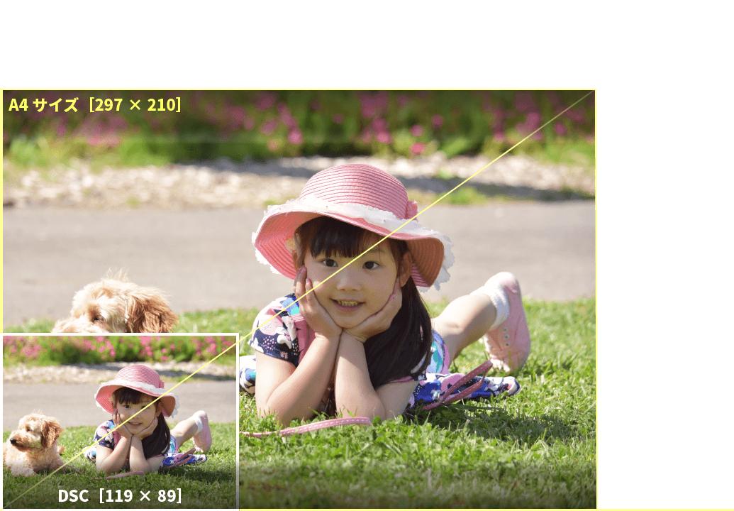 アプリプリントジャパンのDSCサイズは、コンパクトデジタルカメラに多い画像の比率