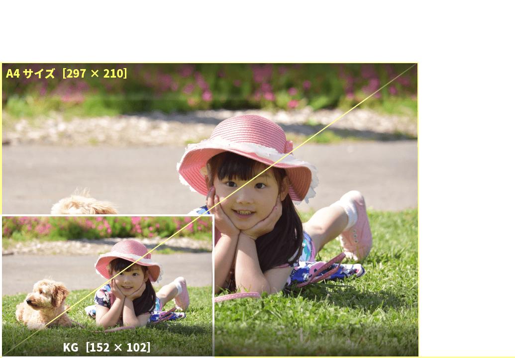 アプリプリントジャパンのKGサイズは、ポストカードサイズ。ハガキよりは少し大きいサイズ