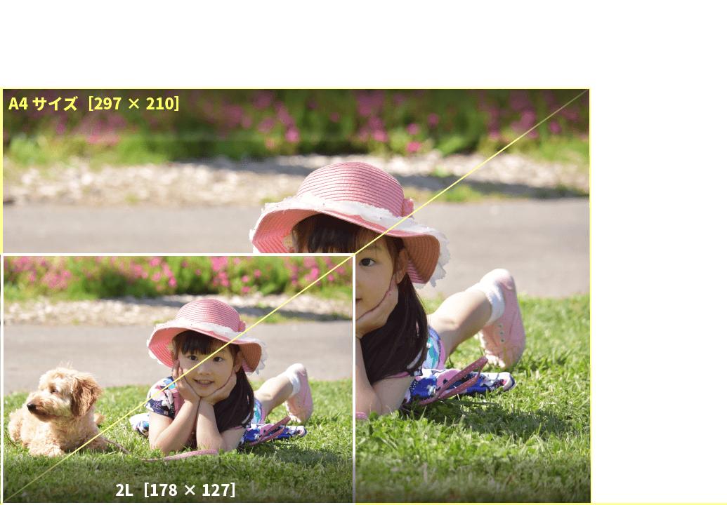 アプリプリントジャパンの2Lサイズは、Lサイズ2枚分の大きさ