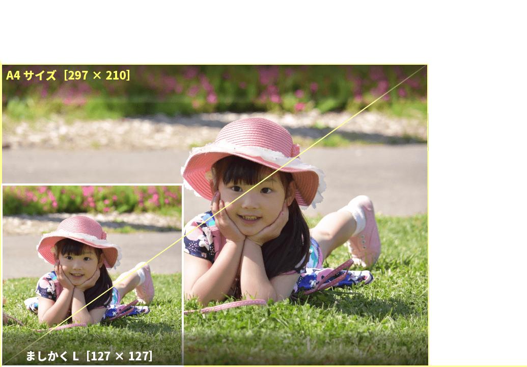 アプリプリントジャパンのましかくLは、スマートフォンで撮影した「スクエア(正方形)」写真の印刷に最適
