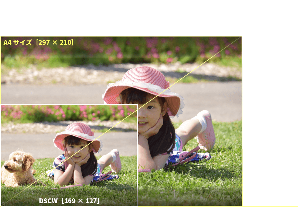 アプリプリントジャパンのDSCWサイズは、DSCサイズ約2倍のサイズ