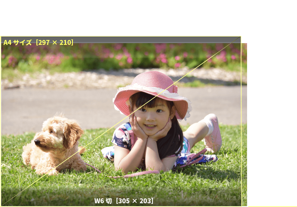 アプリプリントジャパンのW6切サイズは、デジタル一眼レフカメラに多いサイズ