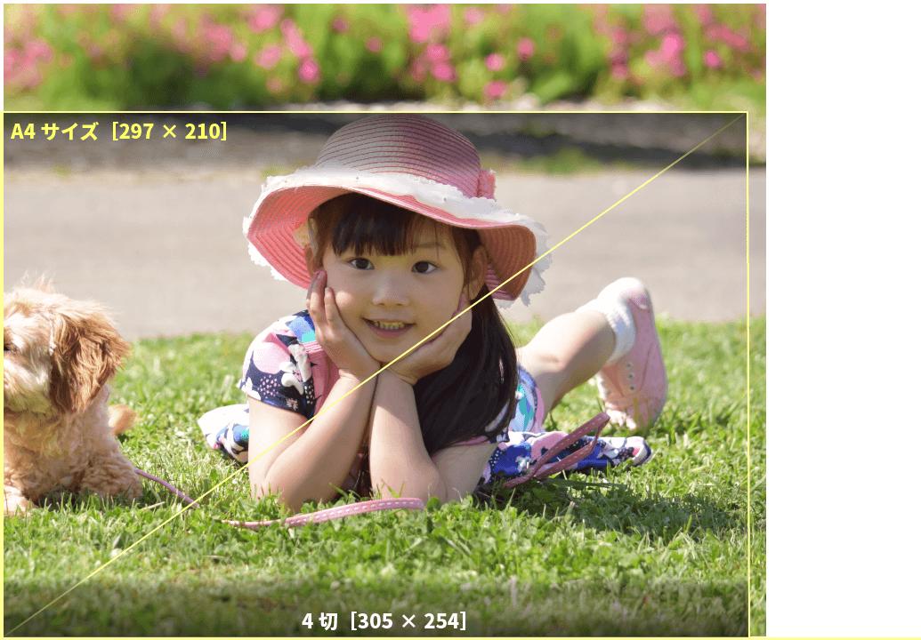 アプリプリントジャパンの4切サイズは、写真用紙の原紙を4つ切り出した大判写真サイズ