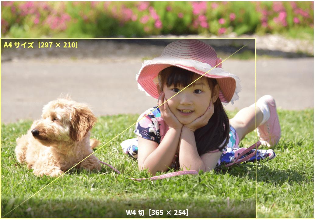 アプリプリントジャパンのW4切サイズは、撮影画像をトリミングしない、4切フルサイズ
